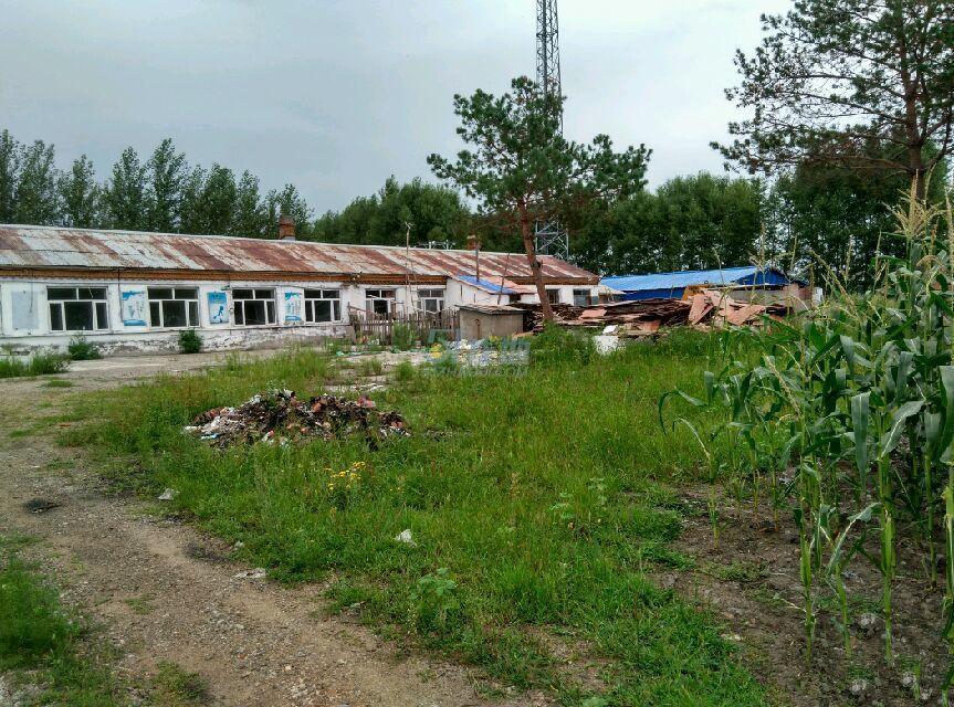 黑龙江省绥化市海伦市1万平土地合作或出售
